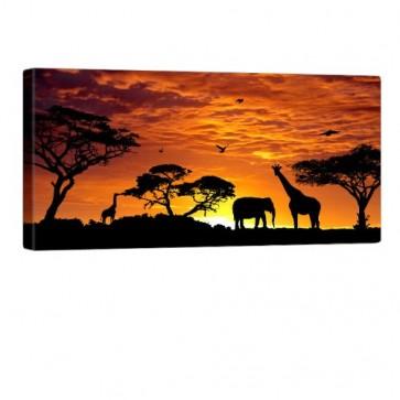 African Feeling Leinwand Bild 100x50cm