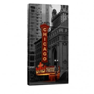 Theatre Of Chicago Leinwand Bild 50x100cm