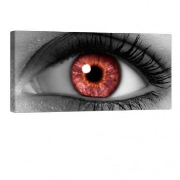 Red Eye Leinwandbild 100x50cm