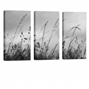 Blades Of Grass Leinwandbild 3x 40x80cm