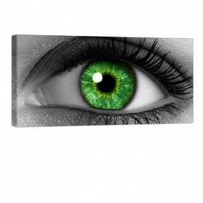 Green Eye Leinwandbild 100x50cm