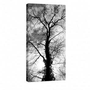 Tree Shape Leinwandbilb 50x100cm