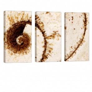 Fossil Leinwanddruck 3x 40x80cm
